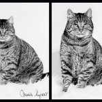 Leonard (6)