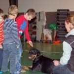 Wizyta w Niepubliczna Szkoła Podstawowa i Gimnazjum w Kowalach 16-11-2012 (12)