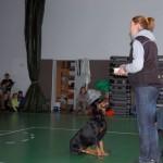 Wizyta w Niepubliczna Szkoła Podstawowa i Gimnazjum w Kowalach 16-11-2012 (3)