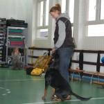 Wizyta w Niepubliczna Szkoła Podstawowa i Gimnazjum w Kowalach 16-11-2012 (4)