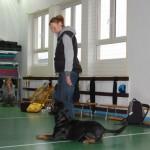 Wizyta w Niepubliczna Szkoła Podstawowa i Gimnazjum w Kowalach 16-11-2012 (5)