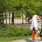 I zlot 18-05-2013 (12)