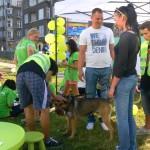 Solidarni ze zwierzętami 24-08-2013 (36)