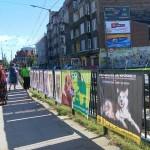 Solidarni ze zwierzętami 24-08-2013 (40)