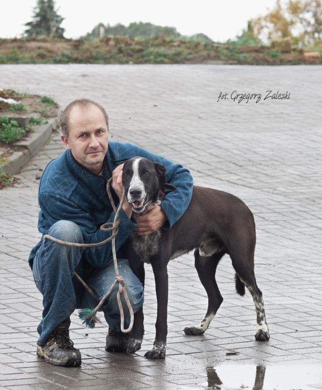 Kabi odebrał właściciel 20-10-2014