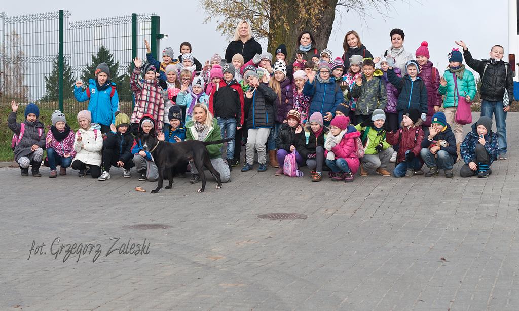 Szkoła Żukowo 03-11-2015
