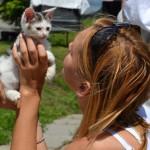 A my mamy koty II (15)