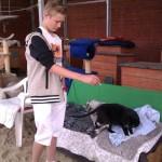A my mamy koty II (22)