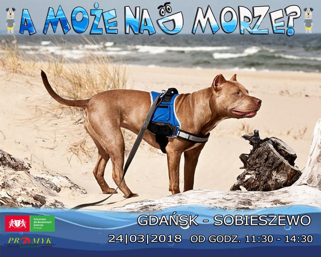 wyjazd-plaża-plakat-internet