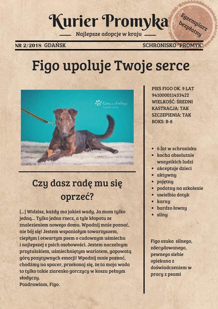 Figo1