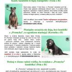 plakaty szkoła (3)