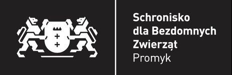 logo czarne str